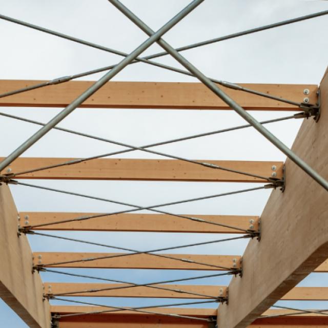 Pusę medžiagų visuomeninių pastatų statybai sudarys mediena ir kitos organinės medžiagos